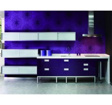 high gloss kitchen cabinet design